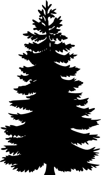 8 Evergreen Tree Vector Images