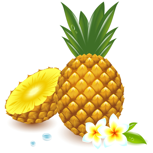14 Free Pineapple Vector Graphic Design Images
