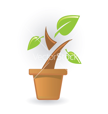 13 Plant Icons EPS Images