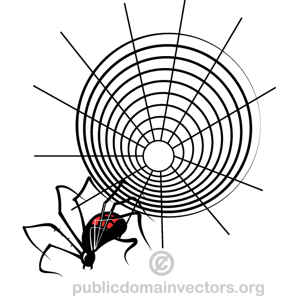 7 Spider Web Vector Images