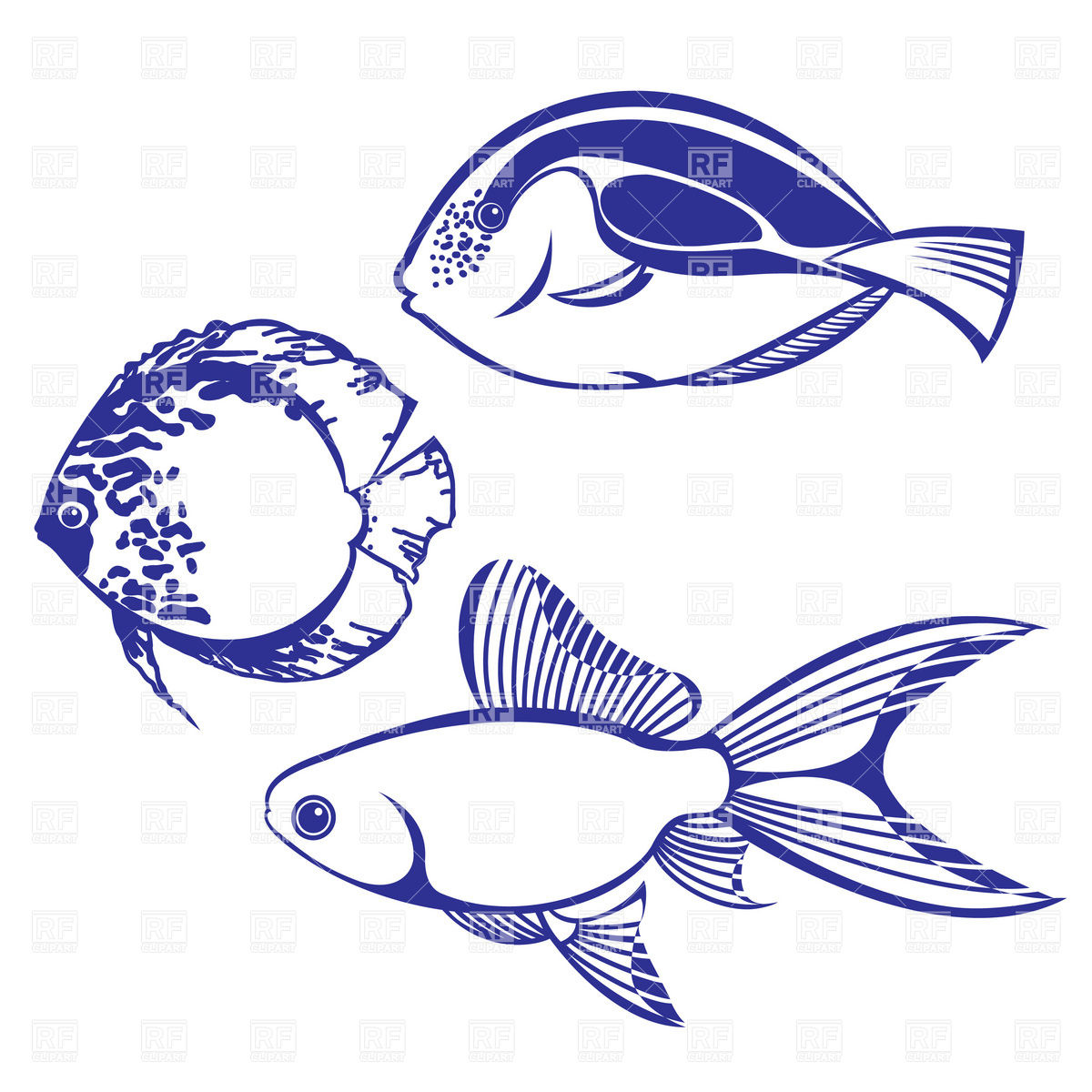 5 Tropical Fish Vector Images