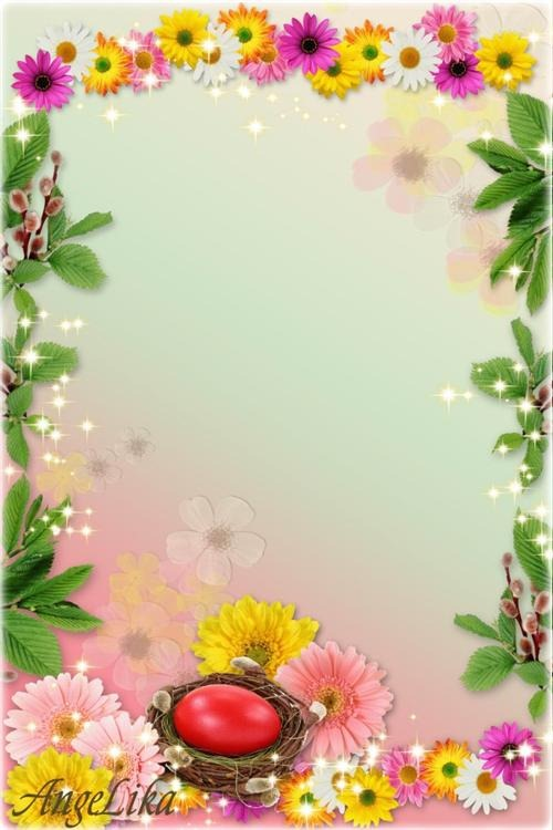 14 PSD Free Flower Borders Images
