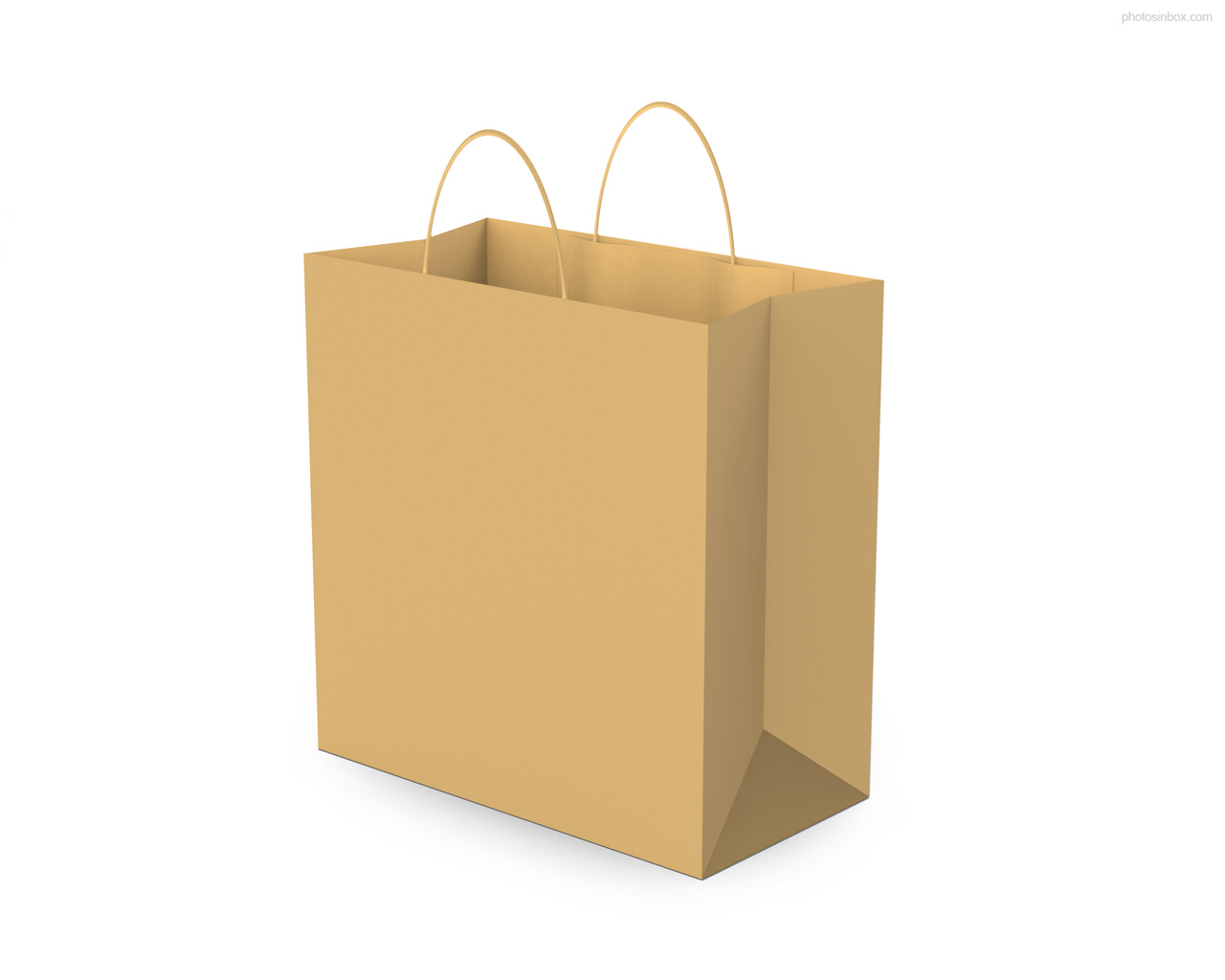 Empty Brown Paper Bag