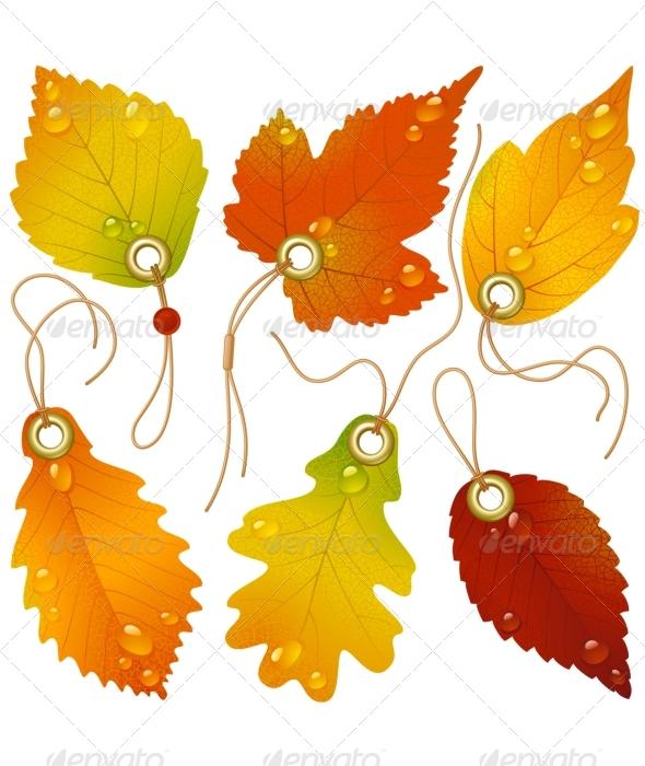 15 FAL Leaf Vector Images - Leaf Silhouette Clip Art ...
