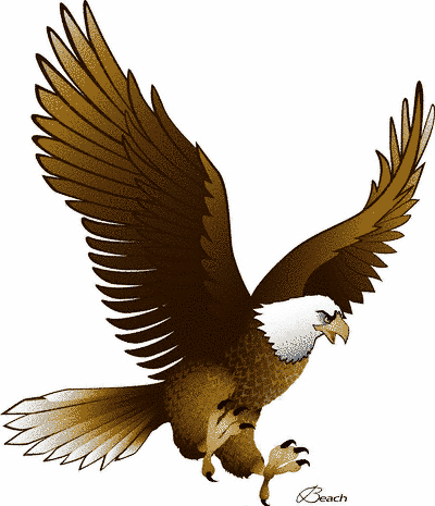 15 Eagle Vector Art Graphics Images