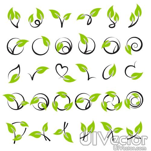 Green Leaf Vine Vector
