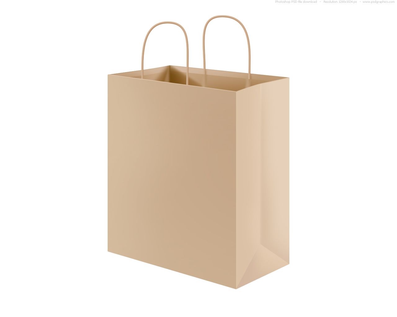 Grocery Shopping Paper Bags