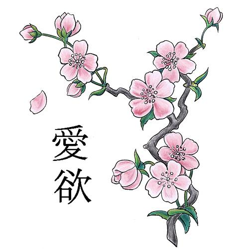 12 Japanese Cherry Blossom Design Images
