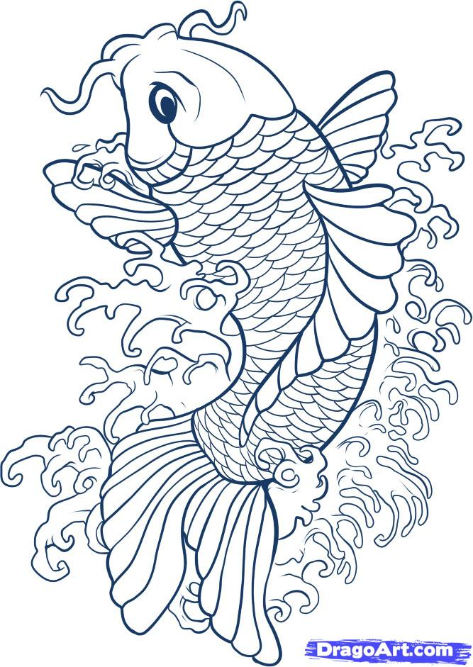 Koi Fish Drawings