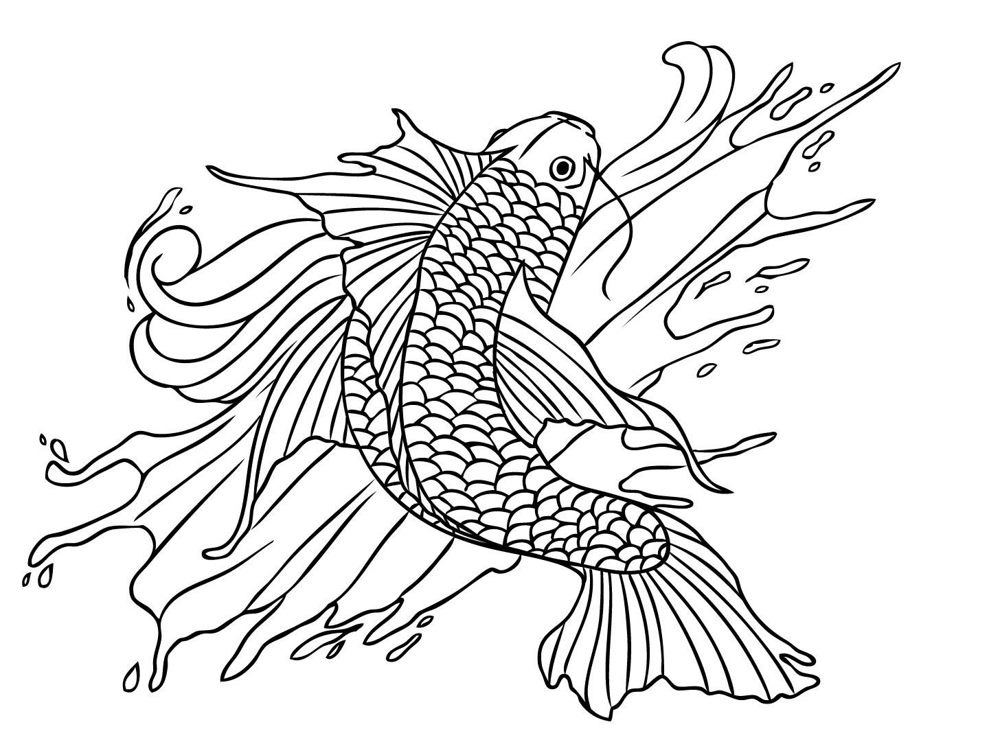Koi Fish Tattoo Drawings