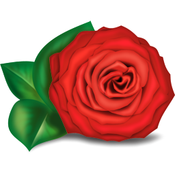 14 Free Rose Icons Images