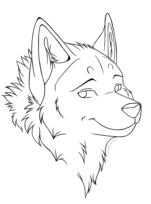 Line Drawing Wolf Head : Sbase sketch images reverse search