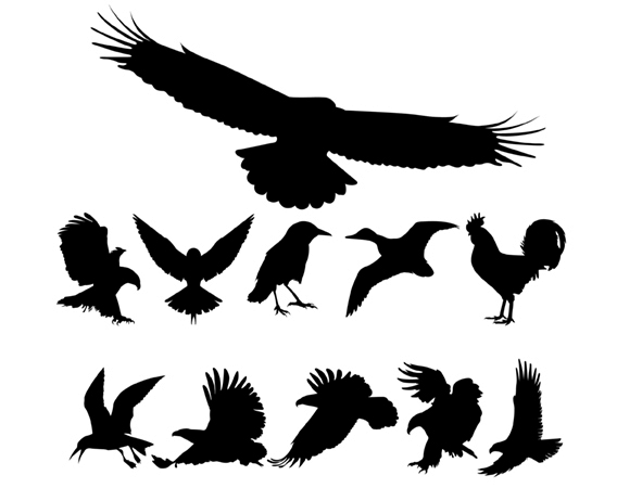 18 Vector Bird Silhouette Images
