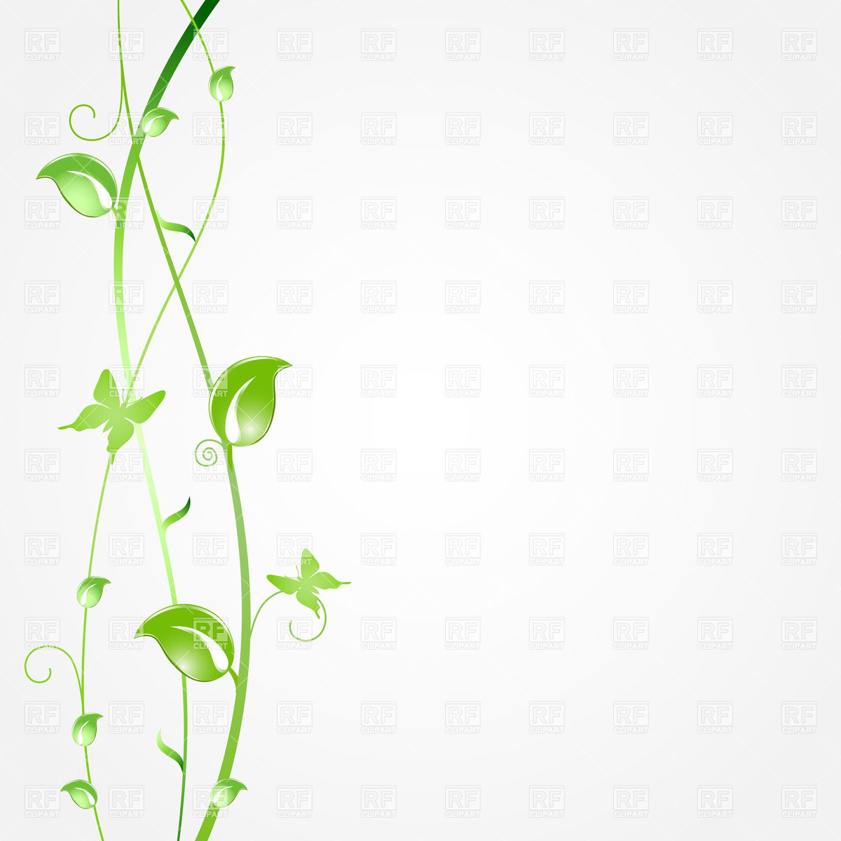 Vector Plant Leaves