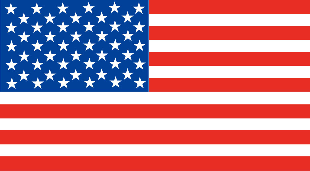 American Flag Vector Free