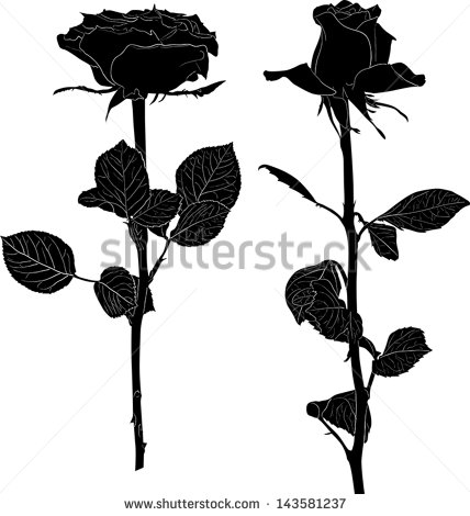 14 Black Rose Flower Vector Images