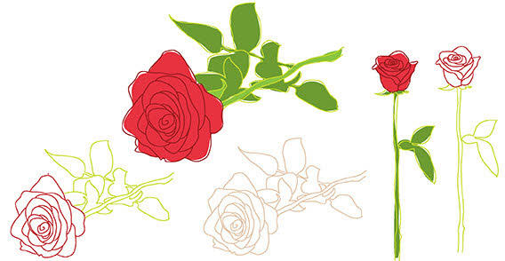 13 Rose Outline With Leaves Vector Images