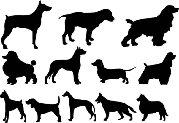 16 Dog Vector Free Download Images