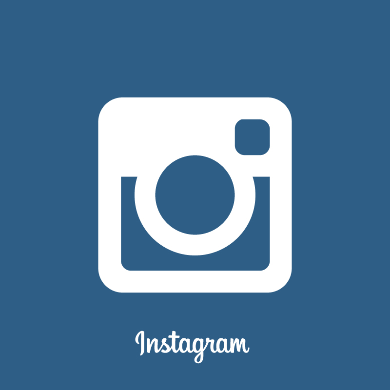 12 Flat Instagram Icon Vector Images