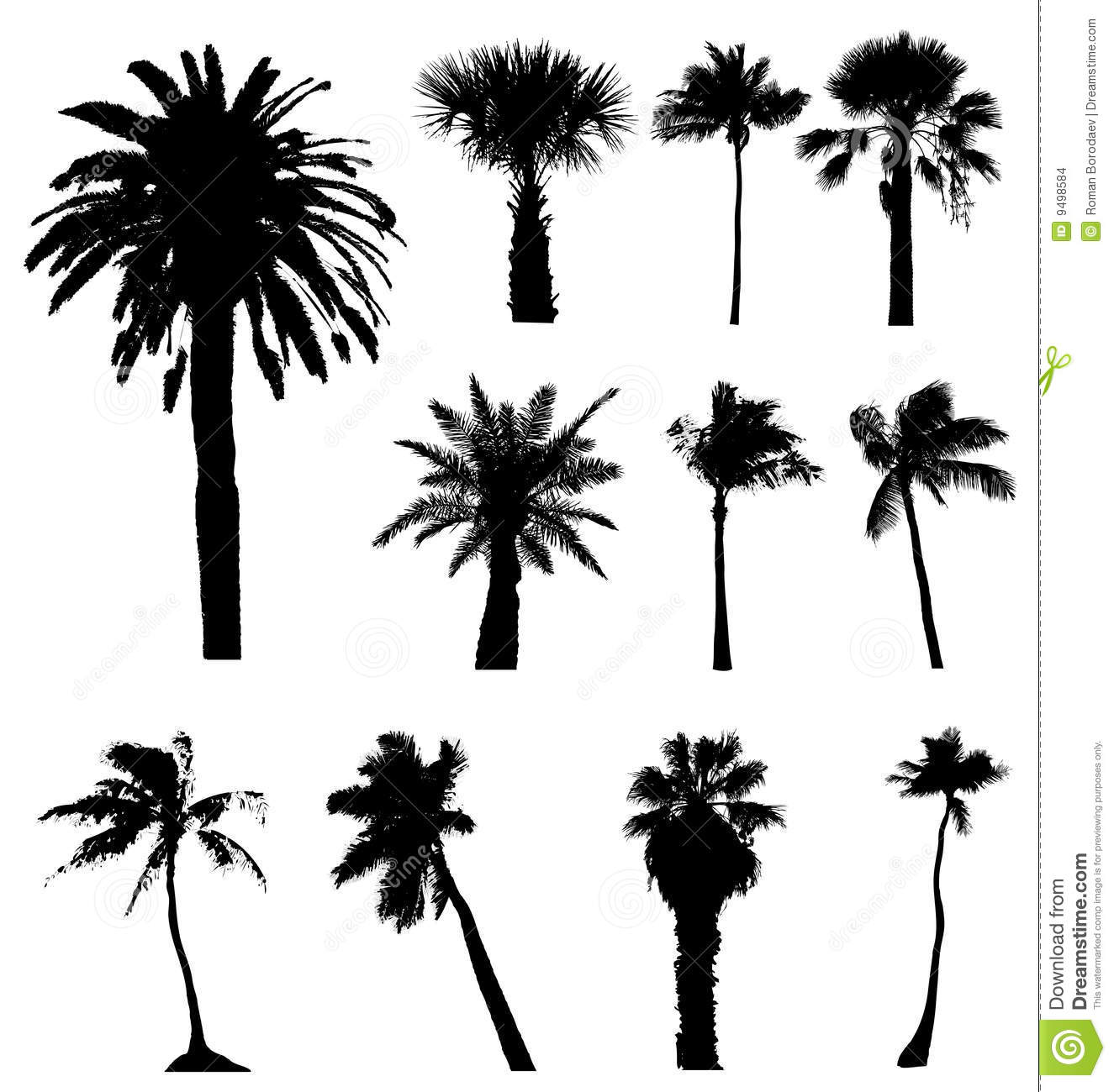12 California Palm Trees Vector Images