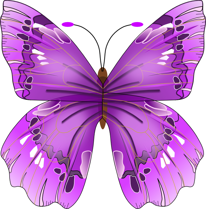 12 PSD Cartoon Butterfly Blue Diamond Images