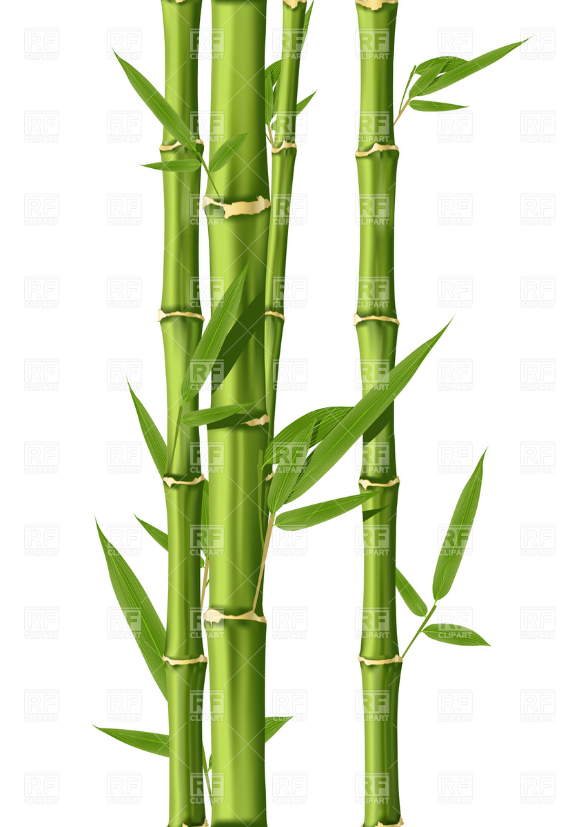 Bamboo Clip Art Free