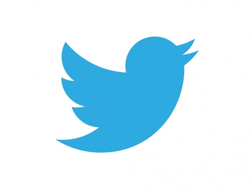 twitter bird vector related keywords twitter bird vector