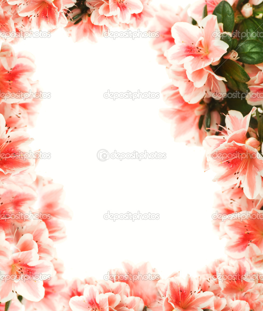 Beautiful Flower Page Borders