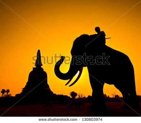 Elephant Riding Silhouette