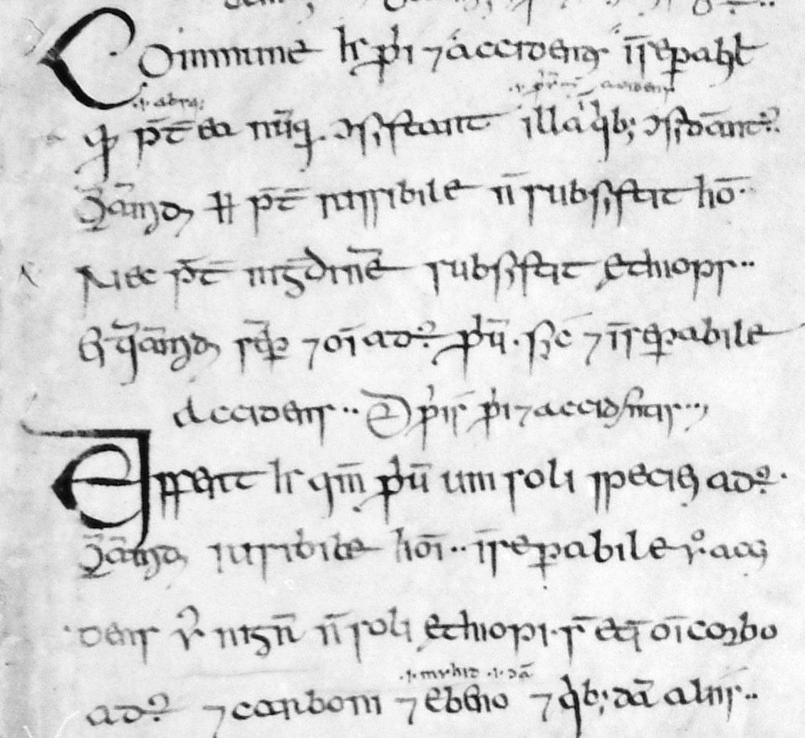 Medieval writing and scripts