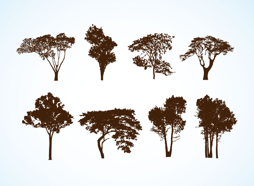 17 Free Vector Tree Forest Images