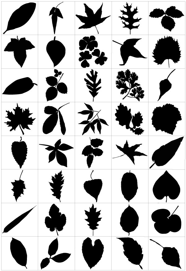 Leaf Silhouette Vector Free