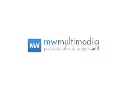 Professional Web Design Logo