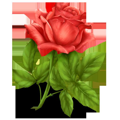 Rose Icon Free Download Birthday