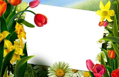 Flower Frames for Photoshop Free Download