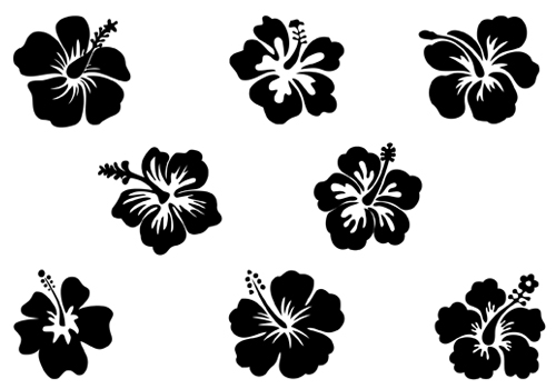 14 Hibiscus Flower Vector Graphic Images