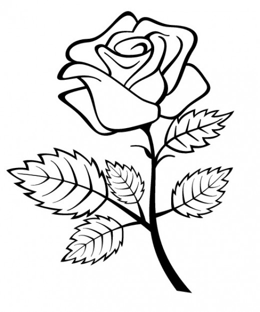 Free Rose Outline Vectors