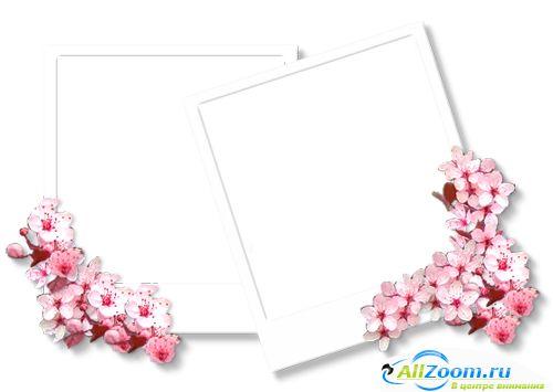 PSD Photoshop Frames