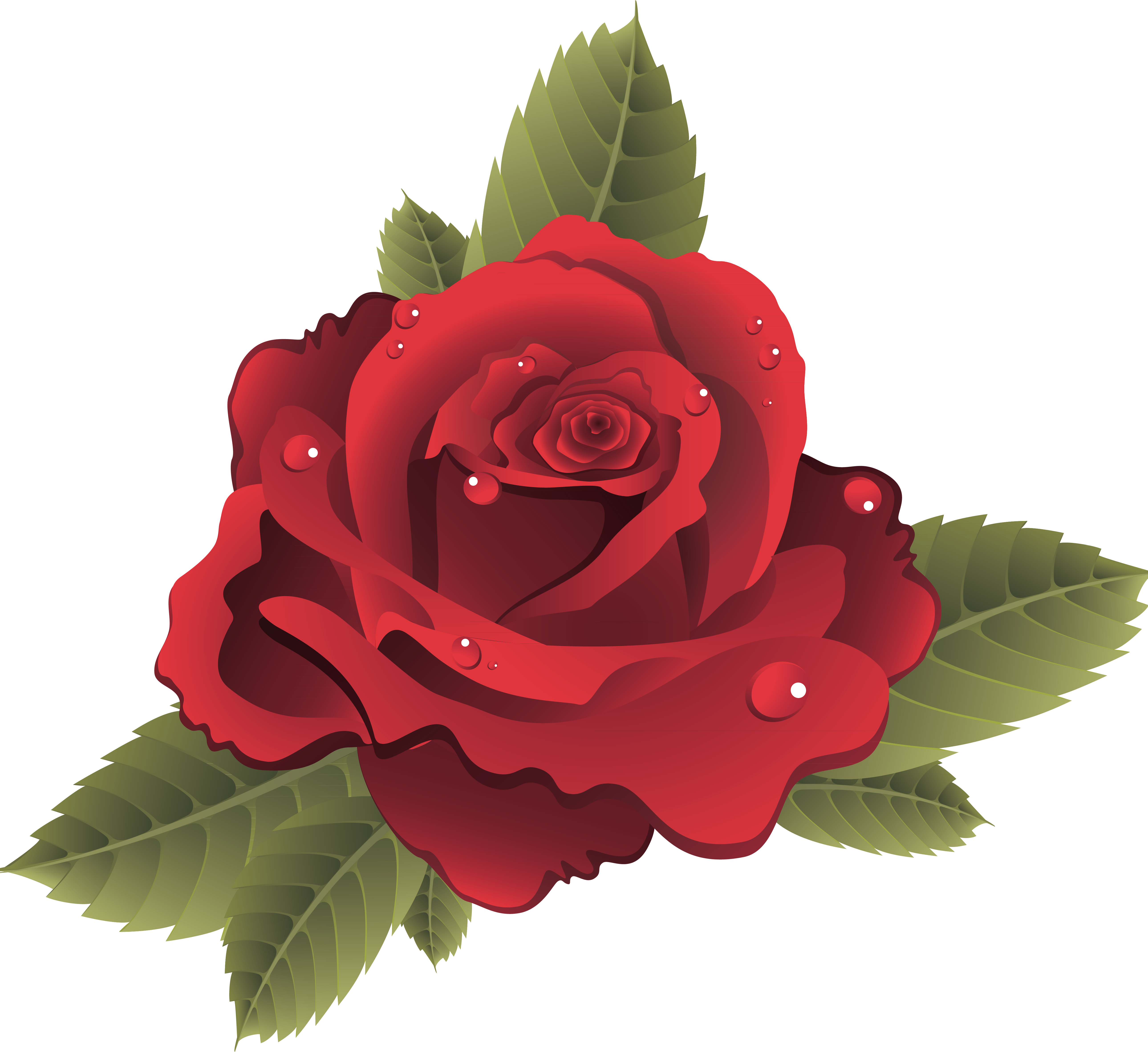 Red Rose Vector Png