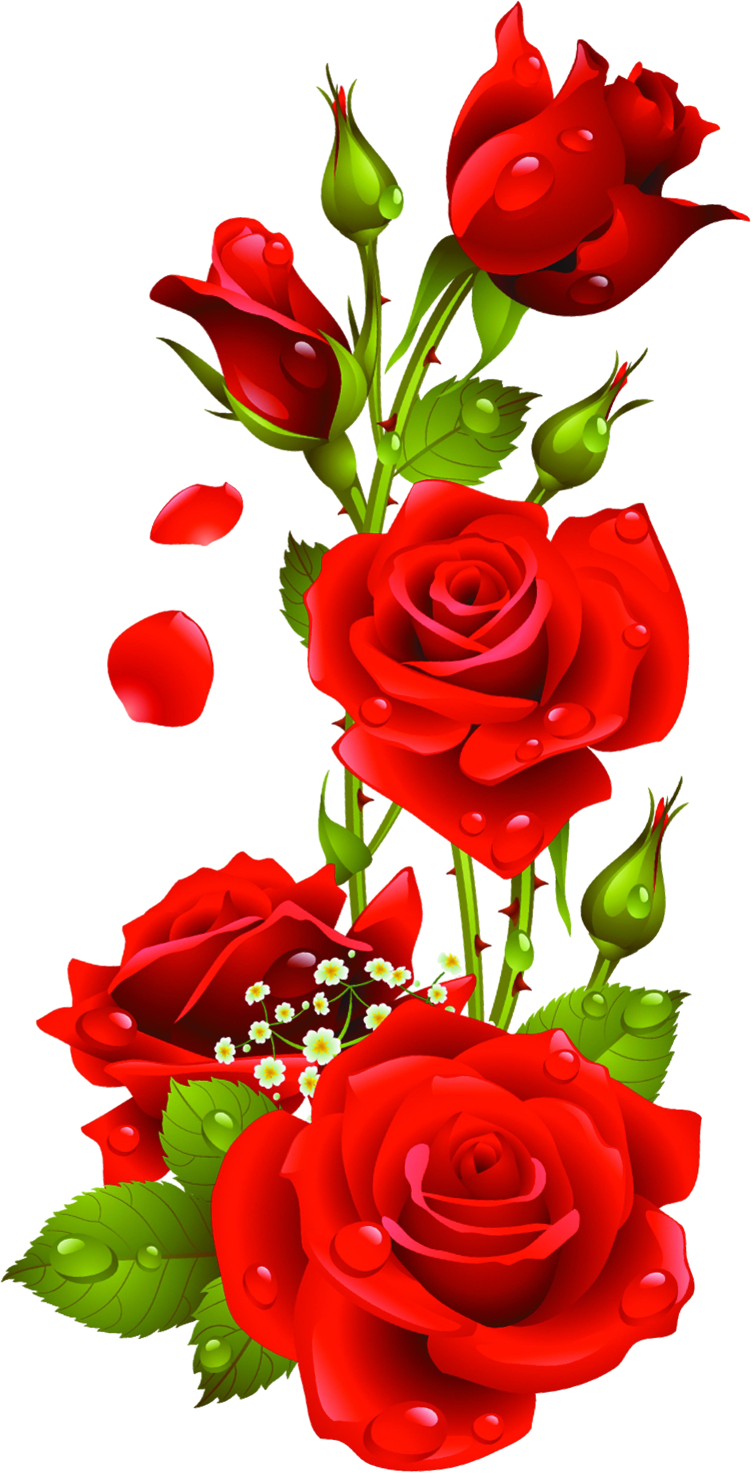 10 Roses Vector Png Files Images Flower Vector Graphics