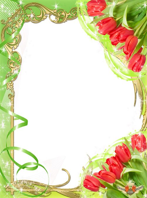 Spring Tulips Frames