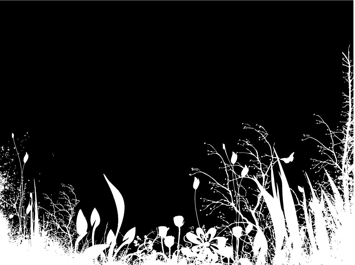 Black and White Flower Silhouette