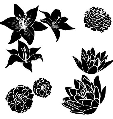 Black Floral Design Flower Vector