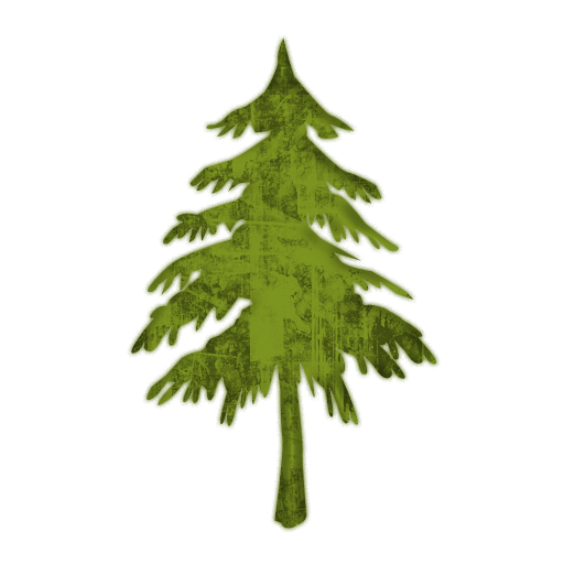13 Evergreen Tree Icon Images