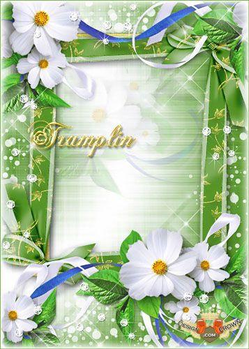 Flower Frame PSD