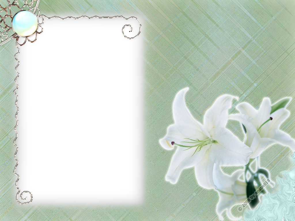 Flowers Frames White