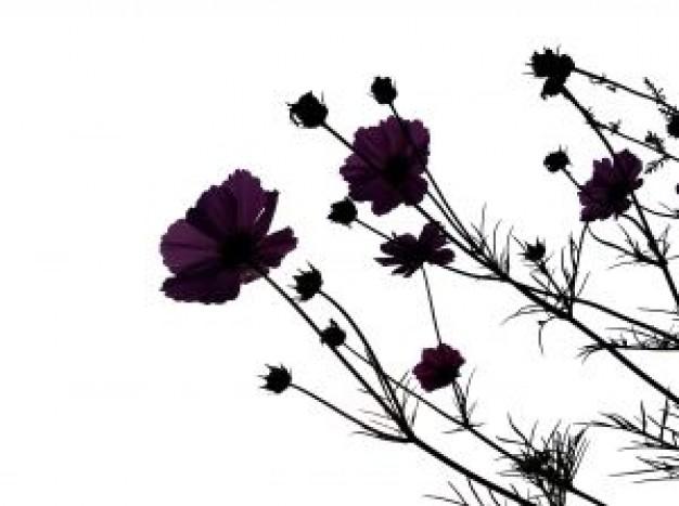 Free Vector Flowers Black