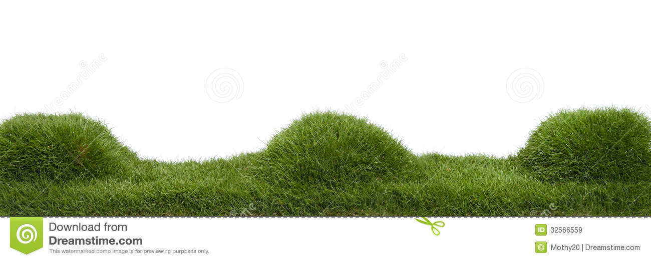 17 mound of grass vector free images grass vector art for Mounding grass