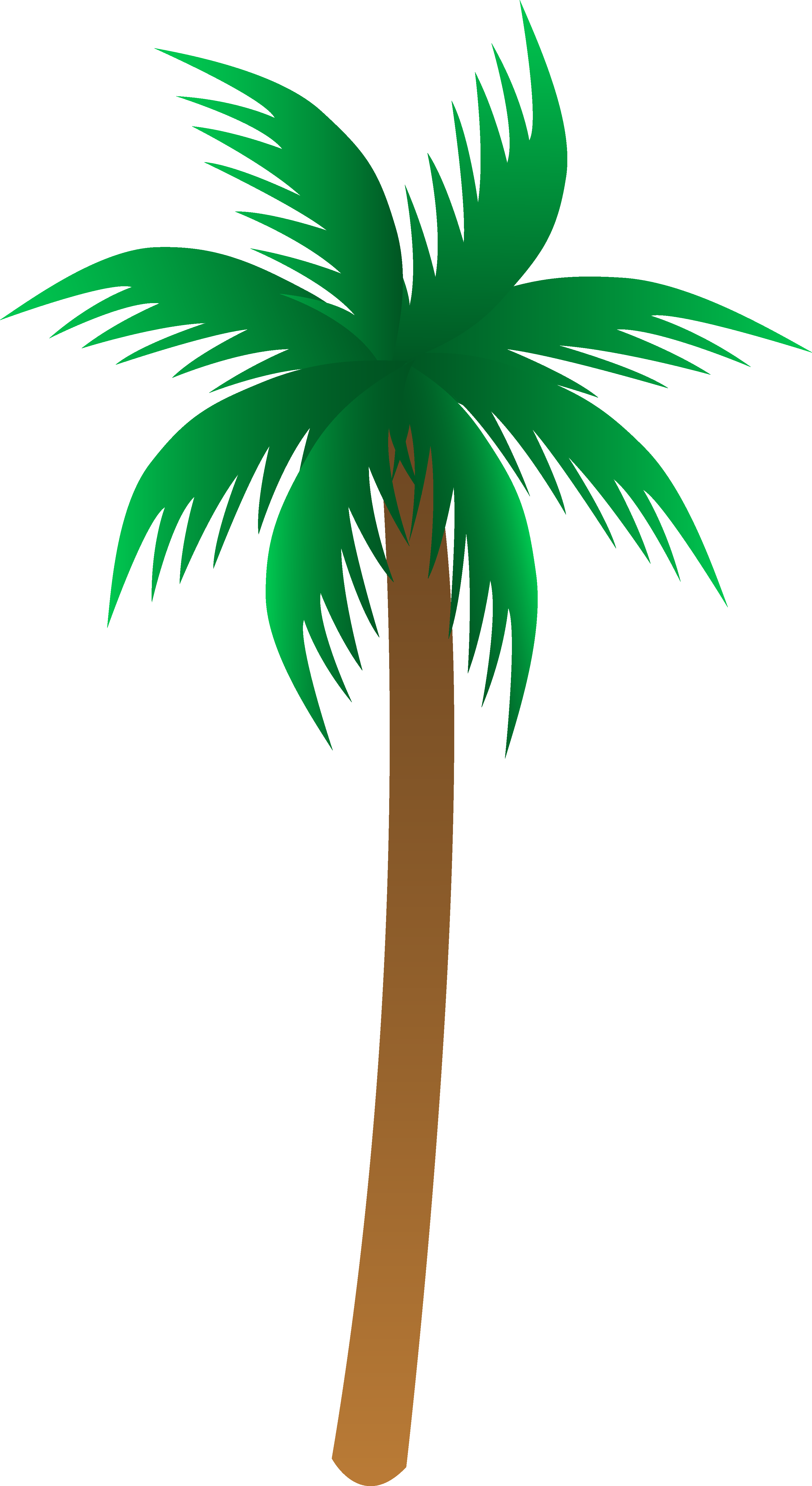 Palm Tree Drawings Clip Art