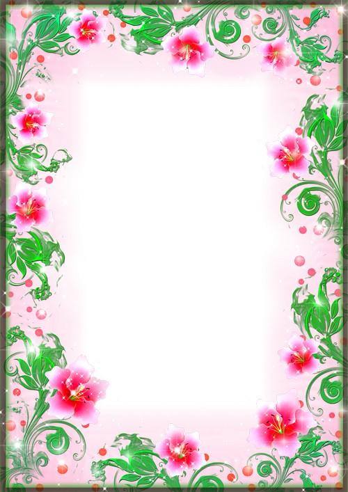 Pink Flower Frame PNG